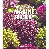 The Captive Marine Aquarium: A Colorful Resource