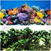 Aquarium Background Coral And Freshwater Plants Jungle Decorations