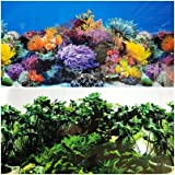 "Product review for NEW!! 19.5 Inch Height Double Sided Aquarium Background Coral/ Underwater Plants Decorations (30""(L) x 19.5""(H))"