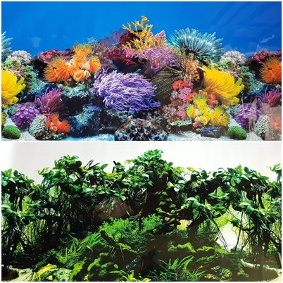 Amazon Com New 19 5 Inch Height Double Sided Aquarium Background