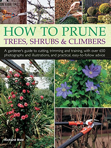 How to Prune Trees, Shrubs & Climbers: A Gardener'S Guide To Cutting, Trimming And Training, With Over 650 Photographs And Illustrations, And Practical, Easy-To-Follow Advice by imusti