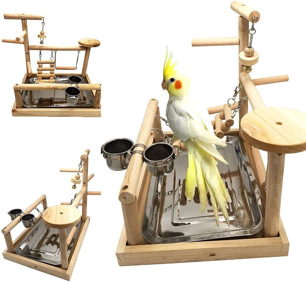 ASDFGHJKL Pájaro Juegos Loro Perca Gimnasio Parque Infantil Soporte De Aves Escaleras Ejercicio Playgym De Cockatoo Periquito Juguete Ejercicio: Amazon.es: Hogar