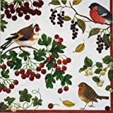 Entertaining with Caspari Winter Birds Luncheon Napkin, Pack of 20