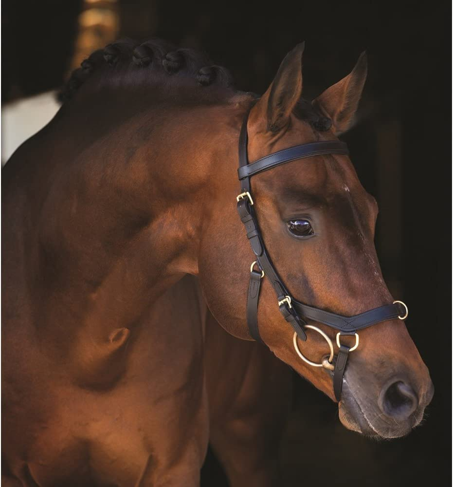 Horseware Rambo micklem Multi/-/Brown Pur-sang Marron marron