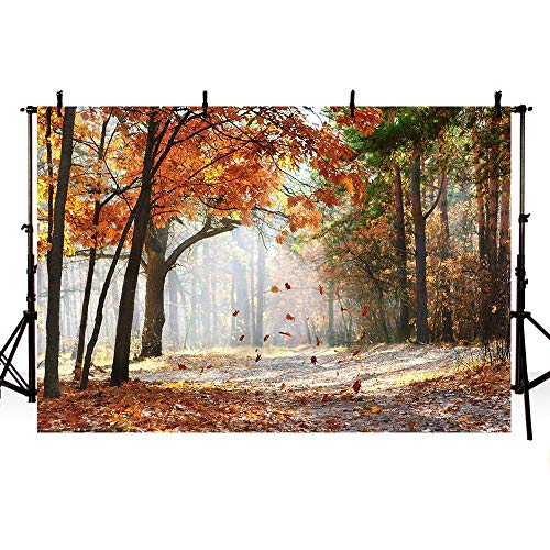MEHOFOTO Gold Autumn Scene Forest Trees Photo Studio Booth Backdrops Maple Leaves Tree Fall Scenery Photography Backgrounds - Photo Fall Leaves