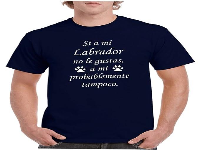 Child: Camisetas divertidas si a mi labrador no le gustas, a mi probablemente tampoco