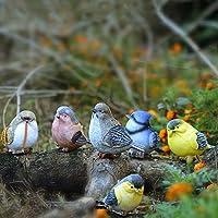 Cozyhoma 6 Piezas de pájaros miniaturas jardín Animal