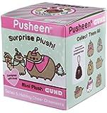 Pusheen Blind Box Series #5