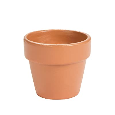 Mini Terra Cotta Pots - Crafts for Kids and Fun Home Activities: Toys & Games