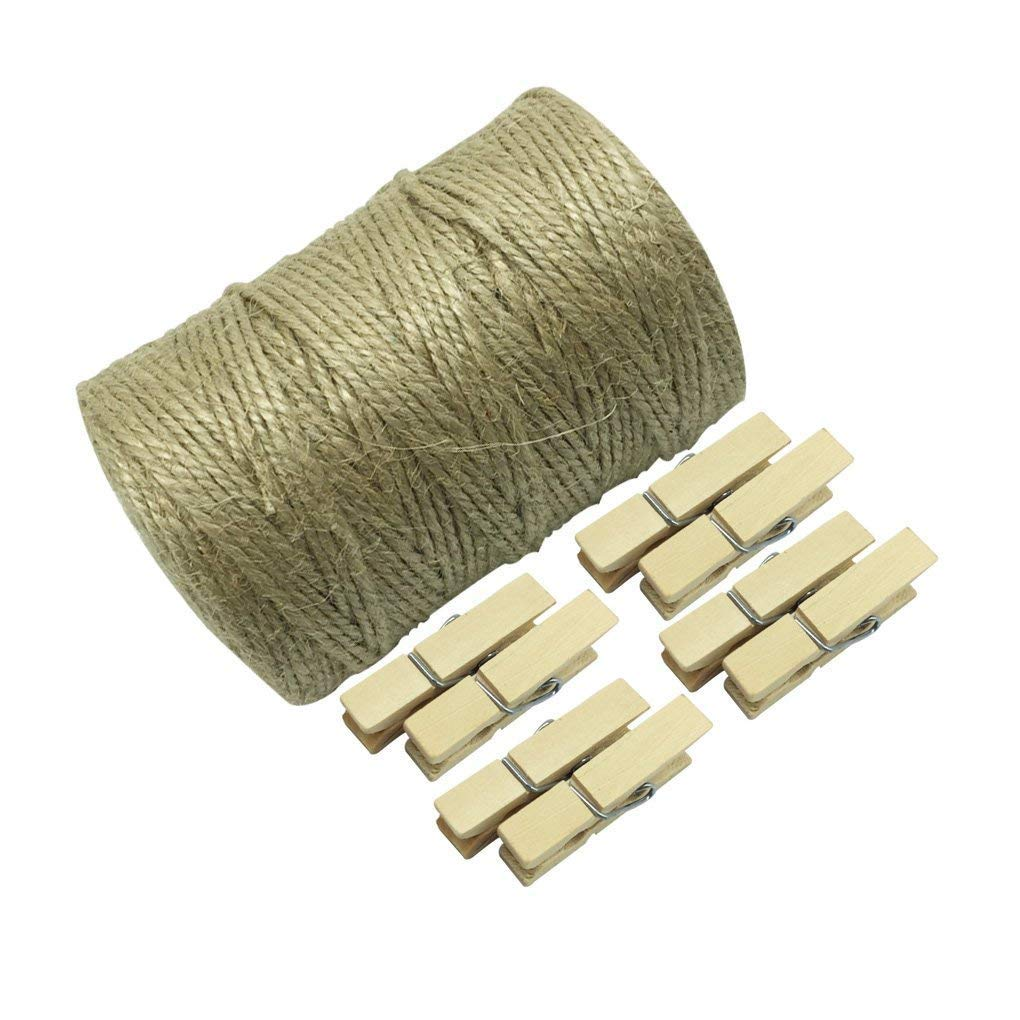 HYHP 50 Pieces Wood Mini Clothespins with 328 Feet Natural Jute Twine for Clothes, Picture, Art, Craft