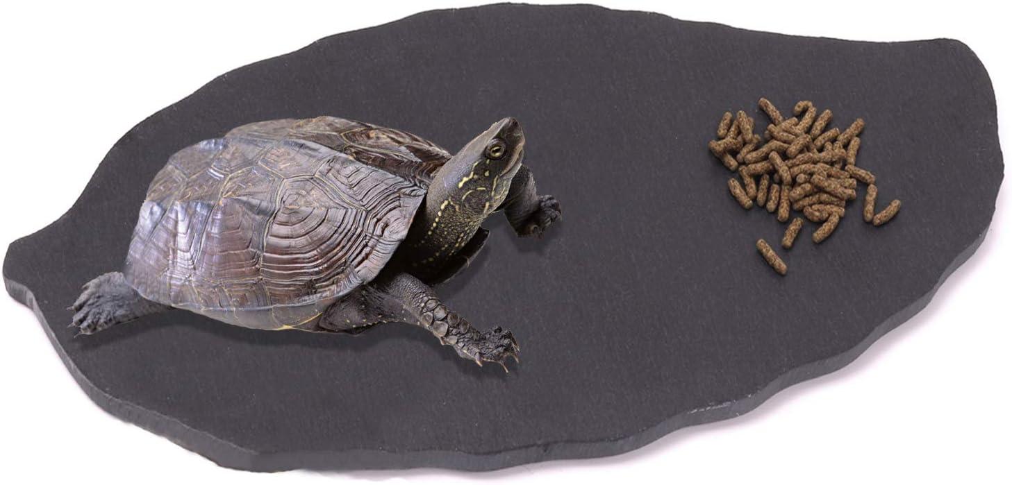 Linifar Reptile Basking Rock Plate Tortoise Feeding Platform Rock Slate Food Dish Habitat Decor for Bearded Dragon Lizard Crested Gecko Chameleon Snake
