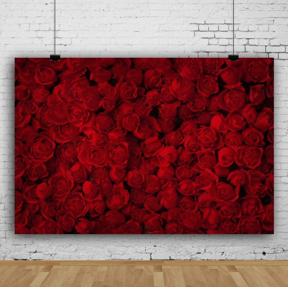 CdHBH 6x8ft Sweet Rose Flower Wall Romantic Valentines Day Floral Texture on White Brick Wall Vinyl Material Portrait Clothing Photo Photography Background Cloth Festival Venue Party Layout