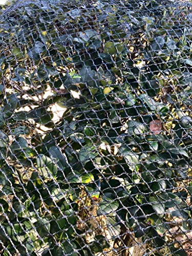 Commercial Grade Heavy Duty Polyethylene Anti Bird Netting for Garden Blueberries Fruit Trees Poultry Cage Pond Net Reusable Does not Tangle Snag or Rot 50 x66