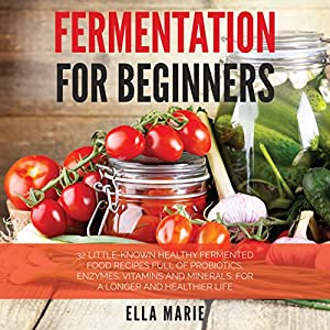 Fermentation for Beginners Audiobook