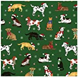 Caspari Cozy Critters Green-Cs13 Continuous Gift Wrapping Paper Roll, 8-Feet
