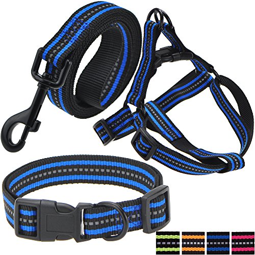 Night Reflective Double Band Nylon Dog Pet Collar, Leash, Harness Set (Medium, Black/Blue)