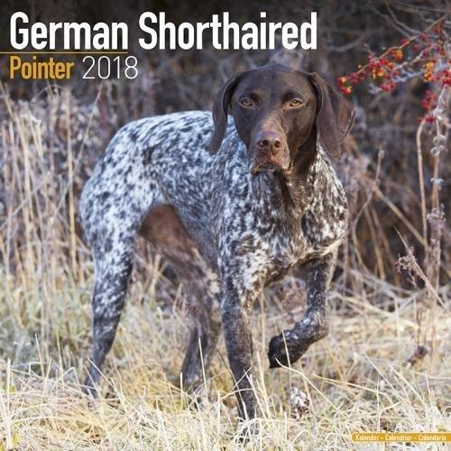 German ShortHair Pointer Calendar - Dog Breed Calendars - 2017 - 2018 wall Calendars - 16 Month by Avonside PDF