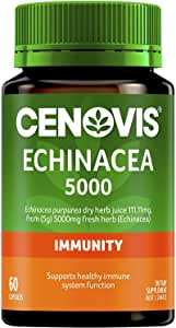 Cenovis Echinacea 5000 - Helps reduce occurrence and duration of common colds - Supports the immune system, 60 Capsules