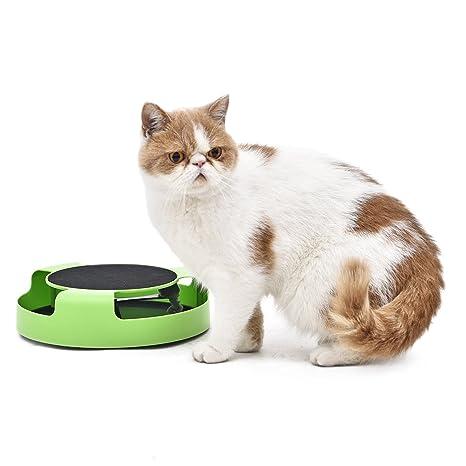 PAWZ Road Cat Tocadiscos Juguete Mascota Gato Placa Interactivo ...