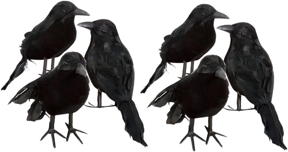 Bonarty 6pcs Real Touch Black Feathered Crows Flying Birds Halloween Decorations Raven Prop Outdoor Crows Halloween Decor Raven Statue Fake Raven