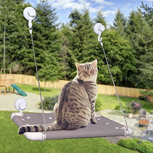 NapMeow Premium Window Cat Bed with Strong Suction Cups, Machine Washable Hammock Kitty Perch, No Tools Required - On Try Glasses Home At For Free