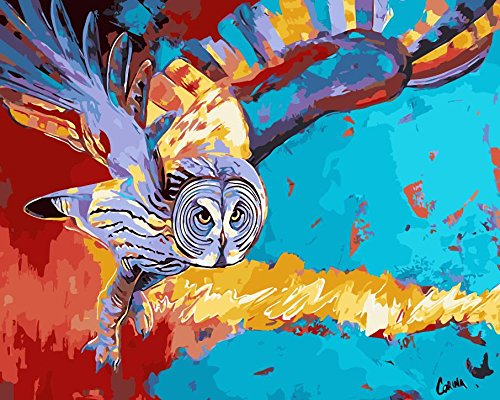 Prime Leader Frameless Diy Oil Painting, Paint by Number Kit 16x20 inch-Abstract Owl