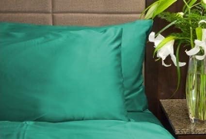 millenniumpaintingfl.com Home & Kitchen Sheet & Pillowcase Sets ...