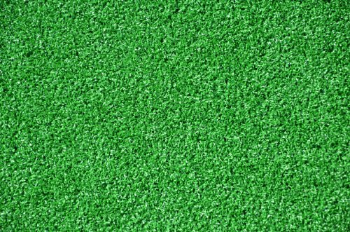 Dean Premium Heavy Duty Indoor/Outdoor Green Artificial Grass Turf Carpet Rug/Putting Green/Dog Mat, Size: 6' x 8' with Bound Edges