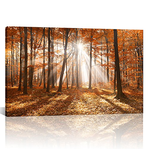 Canvas Wall Art Autumn Maple Tree Forest with Sunshine Landscape Nature USA Design Modern Home Decor Artwork Framed for Living Room Ready to Hang 28''x40'' by Kolo Wall Art