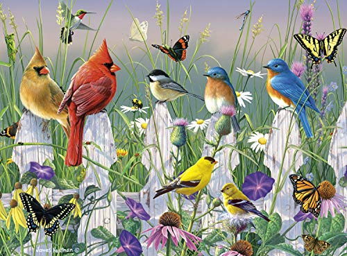 Butterfly Collection Jigsaw Puzzle - Buffalo Games - Hautman Brothers - Birds & Butterflies - 1000 Piece Jigsaw Puzzle