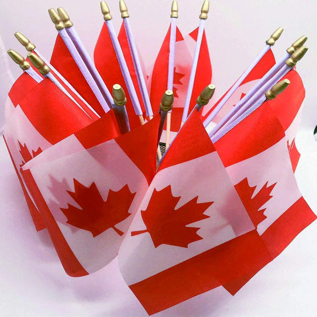25 Pack Small Mini Canada Flag on Wooden Stick, Canadian Hand Held Flags International Country World Stick Flags for Party Classroom Garden Olympics Festival Clubs Parades Parties Desk Decorations