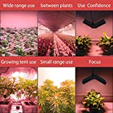 LED Grow Light 1000W Full Spectrum Indoor Plants