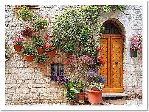 barewalls Flowers Along Medieval Stone Wall Paper Print Wall Art (12in. x (Europa Wallpaper Border)