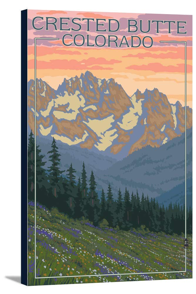 Crested Butte、コロラド – 春の花 12 x 18 Gallery Canvas LANT-3P-SC-49383-12x18 B018P4JMT2  12 x 18 Gallery Canvas