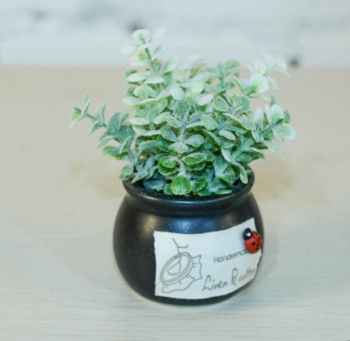 Zzooi Creative Mini Bonsai Suitable For:Office Table, Bed Table,Windows