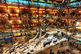 night at the museum free - PigBangbang,Intellectiv Games Photomosaic Jigsaw Puzzle Basswood in a Box 1000 Piece 29.5 X 19.6'' Famous Paintings Mural Home Decoration-A Night At The Museum