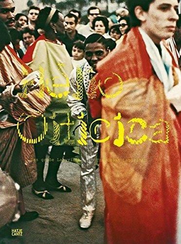 Hélio Oiticica: The Great Labyrinth PDF ePub book