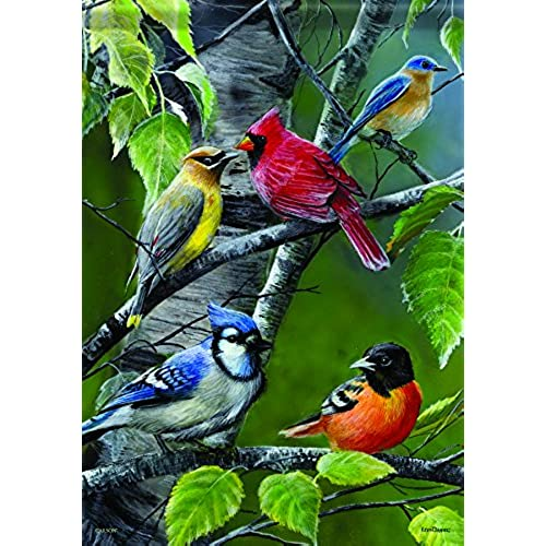 Flags with birds amazon carson home accents flagtrends classic garden flag songbird gathering sciox Choice Image