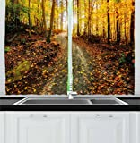 Ambesonne Fall Decor Kitchen Curtains, Inspirational Early Morning View in Woods Rising Sun Idyllic Park Wilderness, Window Drapes 2 Panel Set for Kitchen Cafe, 55 W X 39 L Inches, Multicolor