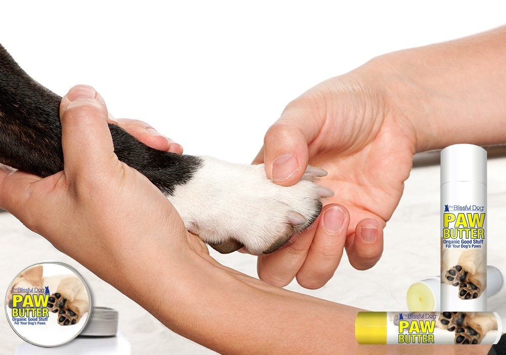 The Blissful Dog Paw Butter for Your Dog's Rough and Dry Paws, 2-Ounce by The Blissful Dog (Image #3)