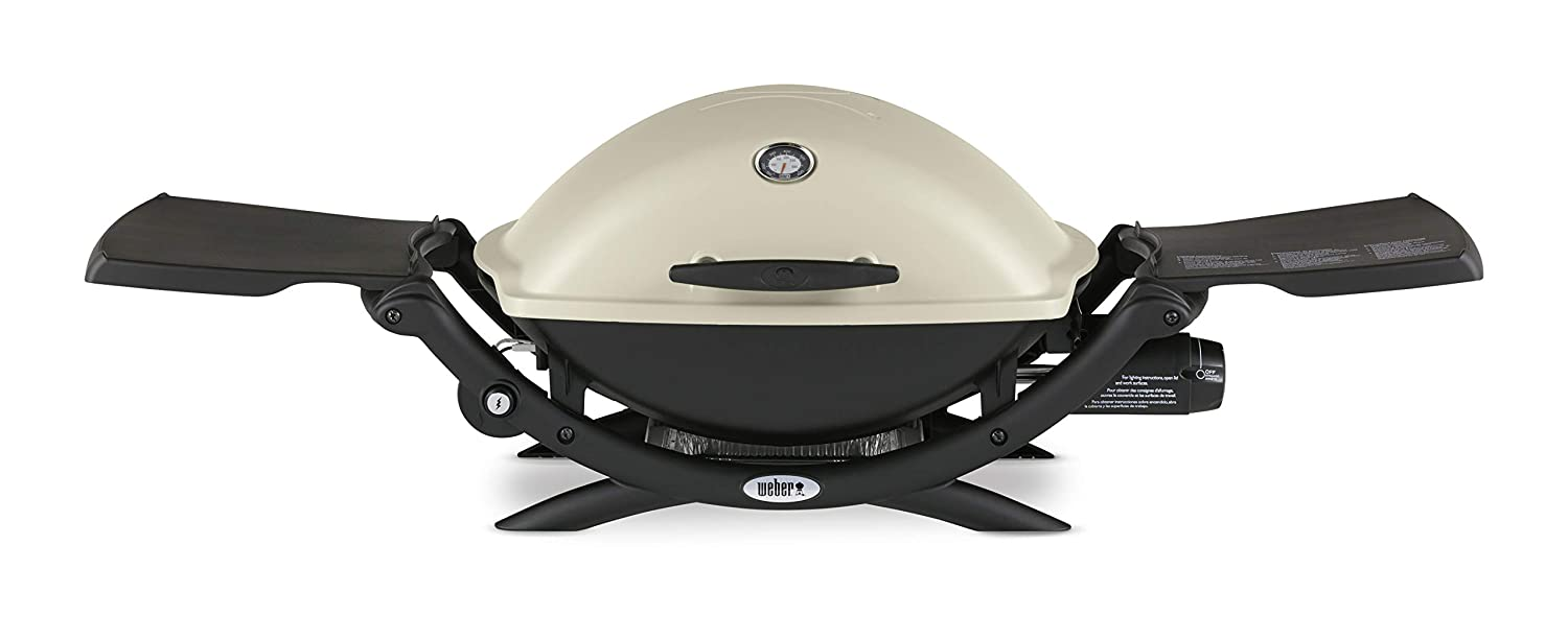Weber 54060001 Q2200 tabletop barbecue grill