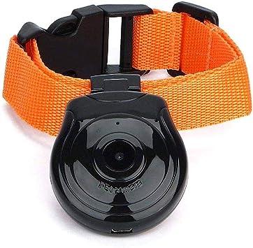 Amazon.com: KOBWA Cámara de collar de perro, USB Digital Pet ...