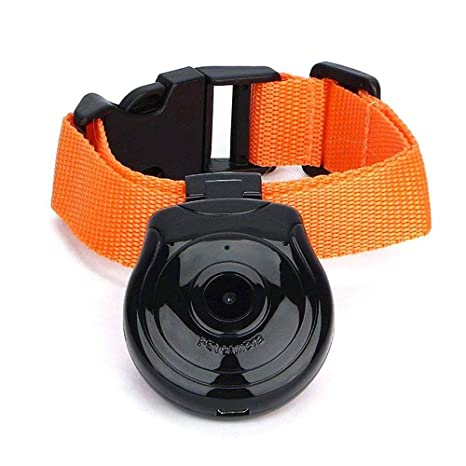 KOBWA Dog Collar Camera, USB Digital Pet Collar Camera Mini DVR Video Recorder Monitor Support