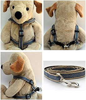 "product image for Diva-Dog 'Denim' Custom 5/8"" Wide Dog Step-in Harness with Plain or Engraved Buckle, Matching Leash Available - Teacup, XS/S"