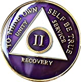 2 Year AA Medallion Metallic Purple Tri-Plate Gold Plated Chip II