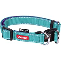 Kazoo Active DD Adjustable Nylon Dog Collar, Aqua/Purple, Small