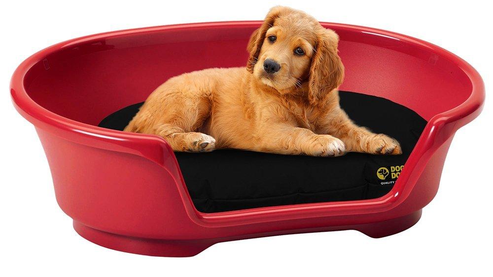 Camas ovaladas Impermeables para Perro Doza, Gris, 80 cm x 50 cm: Amazon.es: Productos para mascotas
