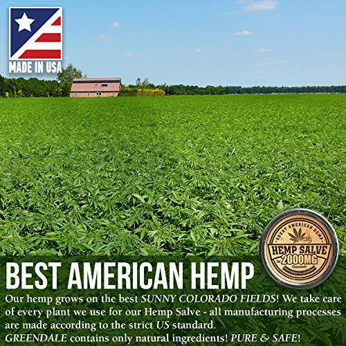 61BX37L XlL - Hemp Oil Salve for Pain Relief - 2000 Mg - Fast Acting & Natural - Knee, Muscle, Joint, Neck & Back Pain Relief - Premium Hemp Oil Made in USA - Anti Inflаmmаtory Hemp Balm - MAX Efficacy - No GMO