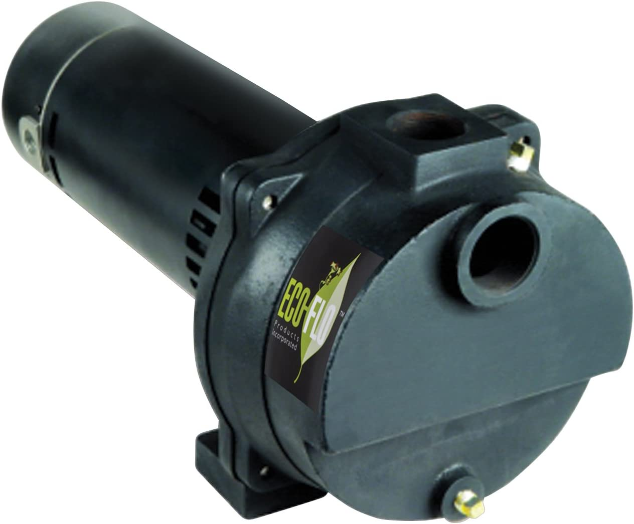 ECO-FLO Products EFLS15 Cast Iron Self-Priming Irrigation Pump,1-1/2 HP, 67 GPM