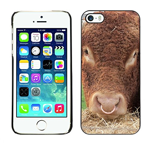 Hülle Case Schutzhülle Cover Premium Case // F00001979 Kuh // Apple iPhone 5 5S 5G